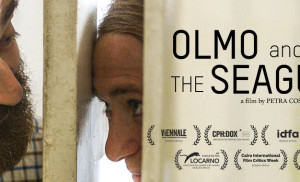 olmo-and-the-seagull